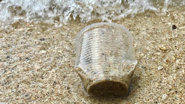 copo plastico praia